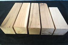 KD thins lumber Premium American Holly cutoffs 50 pcs