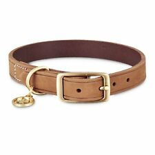 Bond & Co. Suede Leather Dog Collar in Dark Brown, For Neck Sizes 12-15, Small