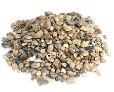 Miniature Garden Enchanted Fairy Glossy River Rocks - 1 Pound Bag