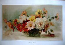 art print~BOWL OF DAHLIAS~Paul deLongpre Victorian flowers floral vtg repr 26x18