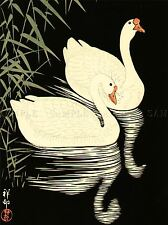 JAPAN NATURE SWAN REFLECT SHOSON OHARA POSTER ART PRINT PICTURE BB53A