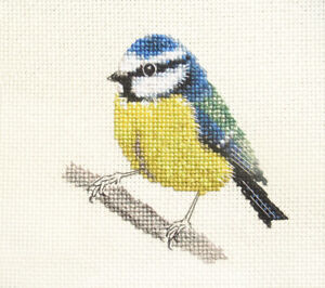 BLUE TIT Garden Bird  Full counted cross stitch kit  Fido Stitch Stitch Studio