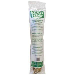 Pond Barley Straw Bale Algae Green Water Blanketweed Treatment X1