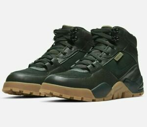 Nike Nike Rhyodomo Gore-Tex Marathon Sneaker Shoes CQ0186-300 Men's Shoe 9