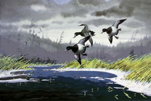 BILLS PAST DUE - Atlantic Flyway, Ducks Unlimited 1989 S/N Print By Les Kouba