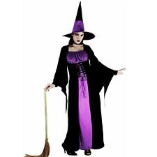 Wicked Witch Womens Costume Halloween Purple Black Long Dress Hat Plus Sizes