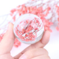 1Pc Clear Crystal Ball Quartz Healing Sphere Photography Props Home Decor SL