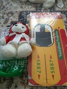 Santa Bear 1987 & Plane, New