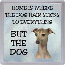 "Italian Greyhound Coaster ""Home is Where the Dog Hair Sticks  ..."" by Starprint"