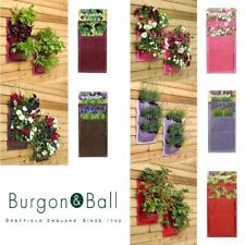 Burgon & Ball Verti-plant Hanging Planting System Holder 2 Pack Various Colours
