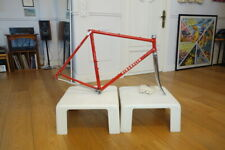 Pinarello Treviso frame set Campagnolo Super Record Headset Campy bottom bracket