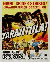 tarantula - Vintage Art Print Poster - A1 A2 A3 A4 A5