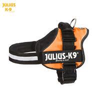 Julius-K9 Powerharness - Orange, All Sizes - The Original K9 Harness!