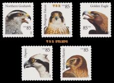 4608-12 4612 Birds of Prey 85c Singles Set of 5 From Sheet 2012 MNH - Buy Now