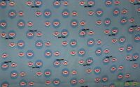 HTF Rare 1.47 Yds Paul Frank Pink Raccoon on Blue Pique Fabric