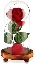 Junnuo Beauty and The Beast Rose, Enchanted Red Silk Rose