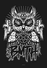 BRING ME THE HORIZON - OWL - FABRIC POSTER - 30x40 WALL HANGING - HFL1068