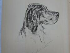 Lucy Dawson 1937 English Setter Dog Print Print 31879 Vintage Irish