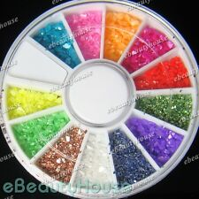 12 Colors Crushed Shell Powder Acrylic Nail Art + Wheel #001V