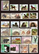 LAOS Animali selvatici e domestico : elefante,tigri,chiens,gatti, F3