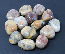 1 Crazy Lace Agate Tumbled Stone (Crystal Healing Tumble Gemstone Reiki)