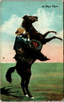A High Flyer Horse and Cowboy 1908 Vintage Postcard AA-004