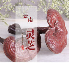 500g Dried Wild Lingzhi Purple Ganoderma Lucidum Herbal Organic Reishi Mushroom
