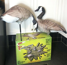 12 Pack Canadian Geese Decoys Featherlites by Cherokee Sports New