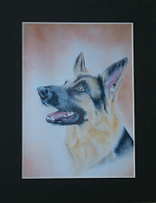 Dog Mounted Print * Many Breeds * Breeds from A-G * 98 images to choose from *