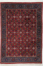 Indo Herati Teppich Orientteppich Rug Carpet Tapis Tapijt Tappeto Alfombra Kunst
