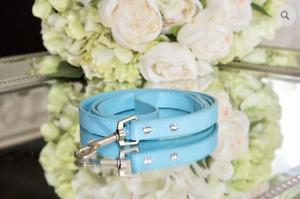 NEW! LUXURY Tiffany Blue Pet Vegan Leather Leash Dogs Cats Pets Robin Egg Blue