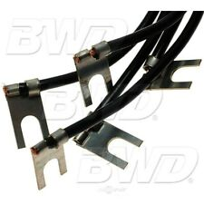Distributor Primary Lead Wire BWD DL24
