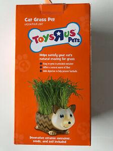 "Toys ""R"" Us Cat Grass Pet BRAND NEW!!"