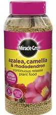 Miracle-Gro Slow Release Azalea Camellia & Rhododendron Plant Food - 1Kg Jar
