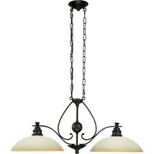 Volume Lighting Rainier 2-Light Foundry Bronze Interior Chandelier