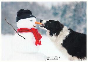 Postkarte: Hund stiehlt dem Schneemann die Nase