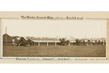 PHAR LAP 1st ever win Maiden Juvenile Hcp 17 April 1929 modern Digital Postcard