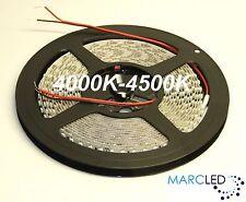 24VDC SMD3528 LED strip 4000K-4500K, 5m (48W, 600LEDs), IP20 120LEDs/m 9.6W/m