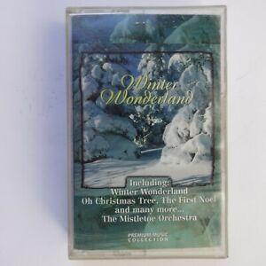 Winter Wonderland (Cassette)