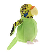 Beautiful Talking Parrot Repeat Voice Recorder Toy Gift for Kids Gift Green
