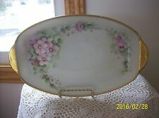 Thomas Bavaria Spring Wild Rose Motif Hand Painted Antique Long Serving Platter