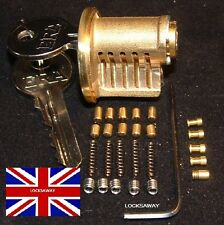 RE-PINNABLE LOCKSMITH CUTAWAY ERA RIM CYLINDER PRACTICE LOCK (with extra pins)