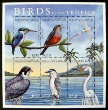 2000 MNH MALDIVES BIRD STAMPS SHEET BIRDS OF TROPICS EGRET FALCON HERON THRUSH
