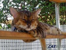 Cat Enclosure Netting 25m x 1.2m BLACK - Low Vis