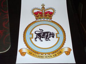 ROYAL AUXILIARY AIR FORCE HIGHLAND SQ 2622 CREST STICKER 7X5 INCH..