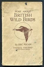 'More about Wild Birds' by Eric Pochin. Illustrated Hardback. 3rd Impression