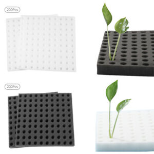 200X Cloning Collars Foam Cloner Collars for Hydroponics Plant Germination Clone