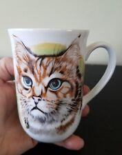 Otagiri ? Japan Tabby Stripe Long Hair Cat Portrait Blue Eyes Mug Maine Coon