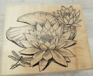 Embossing Arts Co Rubber Stamp 1996 Wonderous Water Lily #944-JJ