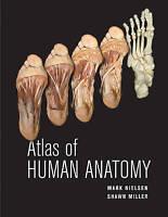 Atlas of Human Anatomy by Nielsen, Mark|Miller, Shawn D. (Paperback book, 2011)